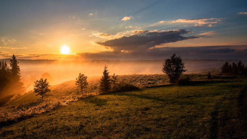 The sun rising over a field