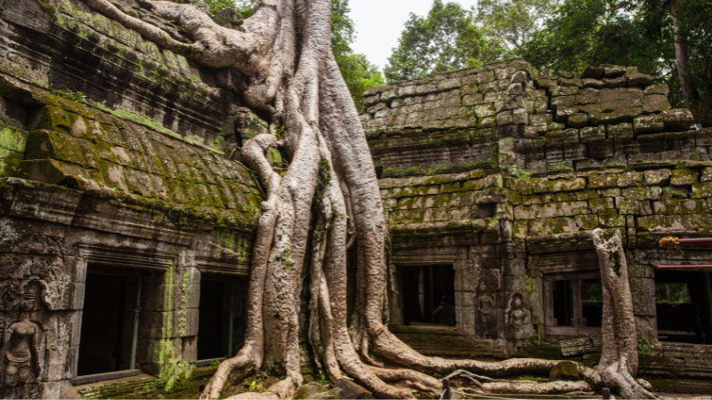 the angkor wat complex in siem reap, Cambodia