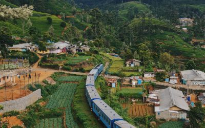 15 Incredible Facts About Sri Lanka That You Need To Know